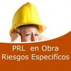 Prevención en obra riesgos específicos (Online)