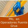 Prevención en operadores en puente - grua (Online)