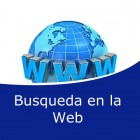 Busqueda en la web (Online)
