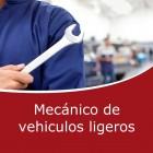 Mecánico de vehiculos ligeros (On line)