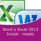 Word 2013 y Excel 2013 Inicial - medio Pack (Online)