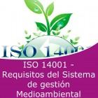 ISO 14001 - Requisitos del sistema de gestión mediambiental (Online)