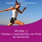 Veladas y espectáculos con fines de animación (Online)
