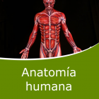 Anatomía Humana (Distancia)