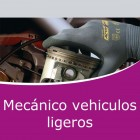 Mecánico vehiculos ligeros Pack (Online)