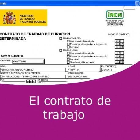 El contrato de trabajo (Online)