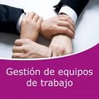 Gestión de equipos de trabajo (Online)