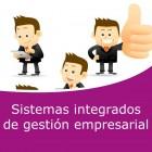 Sistemas integrados de gestión empresarial (Online)