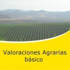 valoraciones agrarias